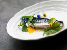 Fillet of mackerel poached in elderflower, borage and nasturtium with oyster cream