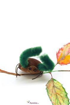 Das große Krabbeln: So ein Kastanien-Käfer ist kinderleicht gebastelt. Conkers, Arts And Crafts, Stud Earrings, Craft Ideas, Jewelry, Nature, Kids, School Kids, Naturaleza