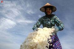 seasalt harvesting in Myanmar by Hein Htet, The Irrawaddy (Global Voices)