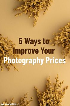 One of the scariest things about running a photography business is figuring out your photography pricing.Once you've done all the math and know how to profitably price your photography, the next step is to present and display your prices so that your clients see you're worth what you're asking to be paid.Below, I'm critiquing the photography pricing list of one of my Simplified Photography Pricing Formula students, Ciera Kizerian. Photography Price List, Photography Business, Improve Yourself, Students, Display, Running, Math, Floor Space, Billboard