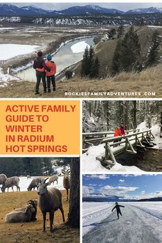 Discover hot springs, wildlife roaming the streets everywhere, and easy hiking trails for the whole family in Radium Hot Springs, British Columbia this winter or spring. fun winter Active Family Guide to Winter in Radium Hot Springs Winter Travel, Winter Hiking, Winter Tips, Canada Travel, Travel Europe, Travel Packing, Travel Luggage, Travel Fishing Rod, Travel Captions