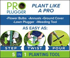 40621978 - ProPlugger Campaign