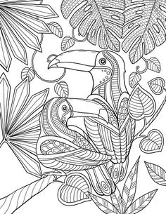 Coloring Pages For Grown Ups, Bird Coloring Pages, Printable Adult Coloring Pages, Doodle Coloring, Mandala Coloring Pages, Coloring Books, Colorful Pictures, Drawings, Illustration