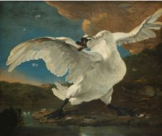 """Jan Asselijn (ca. 1610 - The Threatened Swan (Le Cygne Menacé), circa Rijksmuseum, Amsterdam. Caravaggio, Wall Art Prints, Fine Art Prints, Canvas Prints, Oil Canvas, Canvas Art, Rembrandt, Dutch Golden Age, Johannes Vermeer"