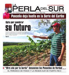 Edición 1680  La Perla del Sur - del 10 al 16 de febrero de 2016