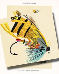 C F Orvis Fly Fishing print