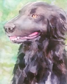 Totózinho!!! #dog #black #blackdog #aquarela #watercolortattoo #watercolor #cachorro #perro #negro  #happy #cansonpaper  #keramik by rick_munin
