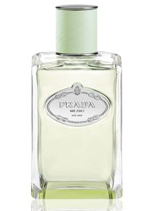 Infusion de Vetiver Prada perfume - a new fragrance for women and men 2015 Hermes Perfume, Top Perfumes, Iris, Fragrance Parfum, New Fragrances, Fragrance Online, Sephora, Miniature Bottles, Hair Treatments