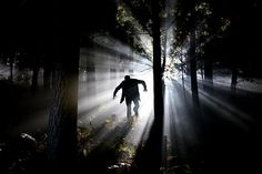 Creepy forest sounds effects at night. Horror ambience in the wood. Strange monsters voices, dark ravens crow, owls hoot and horrific echoes. Picture Writing Prompts, Writing Prompts 2nd Grade, Writing Prompts Funny, Writing Prompts For Writers, Story Prompts, Writing Tips, Writers Write, Dark Forest Theory, Ghost Stories