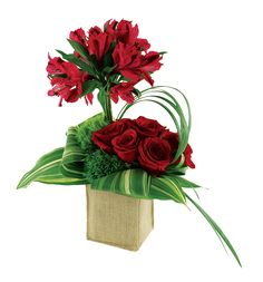 Burlap Roses and Alstroemeria