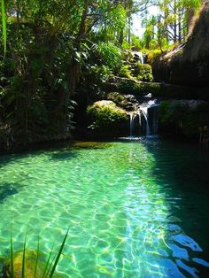 Awesome waterfall | See More Pictures | #SeeMorePictures Above Ground Pool, In Ground Pools, Tropical Pool, Natural Swimming Pools, Garden Pond Design, Fence, Madagascar Travel, Backyard, Simple