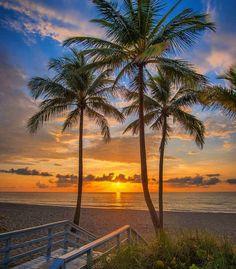 Good morning Miami by @kimohdr