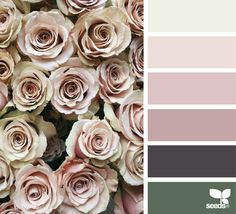 { rose tones } image via: @heather_page
