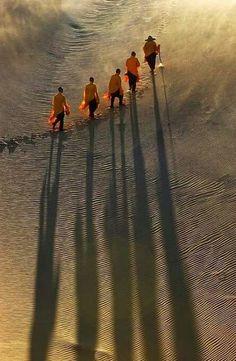 monaci buddisti, vietnam