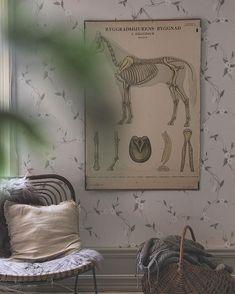 Add Beauty To Your Home (@sandbergwallpaper) • Foton och videoklipp på Instagram Bedroom Wallpaper, Inspirational Wallpapers, Wall Murals, Cosy, Cool Stuff, Beauty, Instagram, Home Decor, Wallpaper Murals