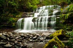 Liffey Falls, Tasmania. About two hours from my hometown.