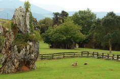 Cabárceno en #Cantabria