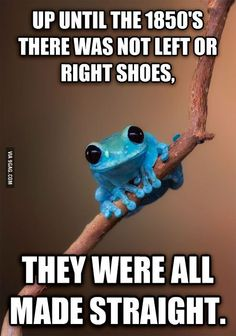 Small Fact Frog: Shoes of the 19th Century #fashion #interesting