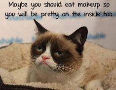 Grumpy quotes, grumpy cat humor, grumpy cat jokes, grumpy cat meme ...For more humour quotes and joke quotes visit http://www.bestfunnyjoke... Check more at http://worklad.co.uk/grumpy-quotes-grumpy-cat-humor-grumpy-cat-jokes-grumpy-cat-meme-for-more-humour-quotes-and-joke-quotes-visit-httpwww-bestfunnyjoke/