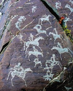 Petroglyphic Complexes of the Mongolian Altai, in Mongolia. Depicts a hunting scene for mountain goats. *Note the horses are painted with circles..like ancient Native Americans.*