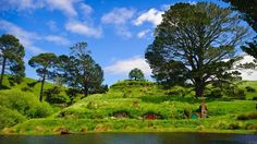 Matamata, near Hamilton, Waikato region, NZ // they left the Hobbit holes as a tourist attraction since they blended into the environment so well... so incredibly green!