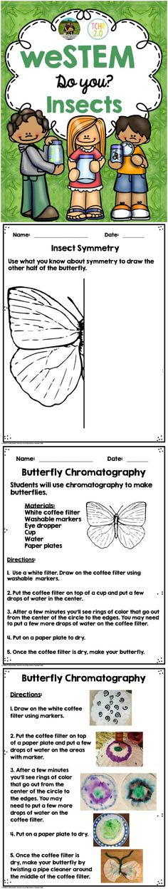 This contains STEM challenges to use if you study insects in your class and a set of Brag Tags to give your students once the activities are completed. There are 12 activities for you to choose from. We have tried to include activities that will supplement what you are already doing in your classroom.