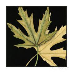Small Tandem Leaves IV Premium Giclee-trykk