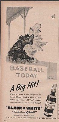 1957-black-white-scotch-scottie-westie-dog-baseball-vintage-1950s-ad-9905034858b8c07e2c75b2b2339a9d1f.jpg (196×400)