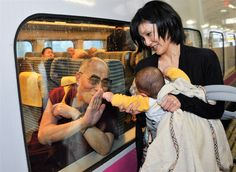 Kimimasa Mayama / EPA    Tibetan spiritual leader Dalai Lama on board a Tohoku Shinkansen bullet train and a baby held by a mother touch through the window at Koriyama railway station, northern Japan, Nov. 6,  2011 after delivering a speech to Fukushima residents racked with the aftermath of the March 11 tsunami and radiation damage caused by the accident at Fukushima nuclear power plant.