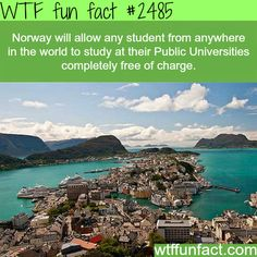 WTF Facts - Page 72 of 1045 - Funny, interesting, and weird facts Wtf Fun Facts, True Facts, Funny Facts, Random Facts, The More You Know, Good To Know, Did You Know, Thats The Way, That Way