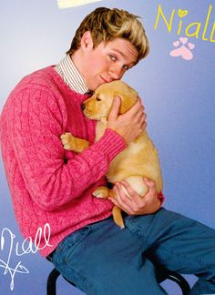 Niall Horan' Puppy Poster from June 2013 Tiger Beat Niall Horan Baby, Naill Horan, One Direction Videos, One Direction Pictures, Irish Boys, Irish Men, James Horan, Foto One, I Love Him