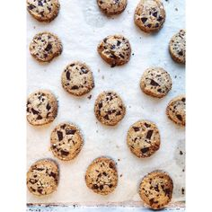 Salted Butter and Chocolate Chunk Shortbread recipe—Alison Roman, author of Dining In (Clarskon Potter, shares the cookies that everyone's baking. Cookie Brownie Bars, Cookie Desserts, Just Desserts, Cookie Recipes, Dessert Recipes, Winter Desserts, Dessert Ideas, Chocolate Chip Shortbread Cookies, Shortbread Recipes
