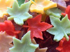 Sabonete Folhas de Outono
