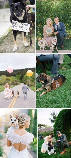 Fotografia: o melhor amigo | Mariée: Inspiração para Noivas e Casamentos