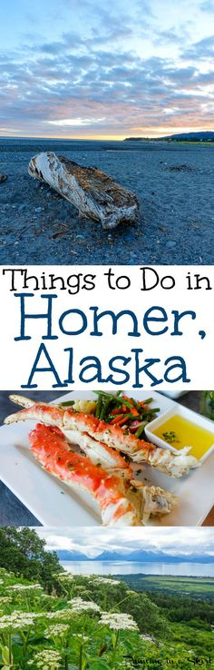Things to Do in Homer Alaska including exploring the eclectic spit, seeing black sand beach locations and restaurants like Two Sisters. Also places to see dozens of wild bald eagles and moose. This is a beautiful summer adventure travel destination. Alaska Travel, Travel Usa, Alaska Trip, Beautiful Places To Visit, Places To See, Halibut Fishing, Homer Alaska, Alaska Adventures, Viewing Wildlife