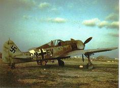 Focke-Wulf Fw 190 Ww2 Aircraft, Fighter Aircraft, Military Aircraft, Luftwaffe, Air Fighter, Fighter Jets, Focke Wulf 190, Ww2 Pictures, Ww2 Planes