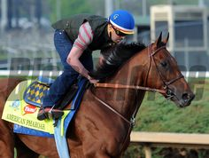 American Pharoah (April 18, 2015) With two weeks to go before the Derby, probable favorite American Pharoah has his first gallop at Churchill Downs... © 2015 Rick Samuels/The Blood-Horse