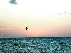 Reposting @destinosdelsol: ¿Cuando fue la última vez que disfrutaste de un atardecer en la playa? ¿Y cuando será la próxima?. #turismo #turismovenezuela #turismointerno #agenciadeviajes #viajeeconómico #turismoactivo