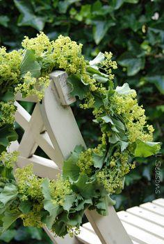 All Seasons: Vakantie inluiden met bloemen..