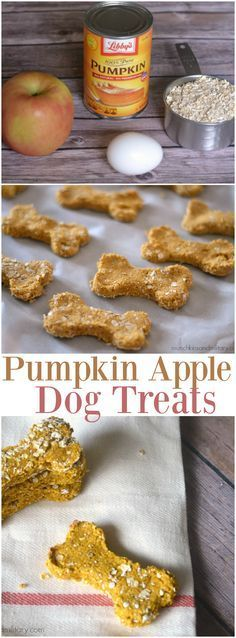 Friandises citrouille pomme pour chien - DIY dog treats and other dog stuff - Chiens Puppy Treats, Diy Dog Treats, Healthy Dog Treats, Healthy Pets, Fall Treats, Eating Healthy, Food Dog, Puppy Food, Treats For Puppies
