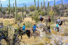 Riding the Sonoran Desert with Tanque Verde Ranch in Tucson.