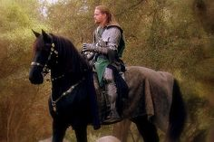A Knight and his horse<3