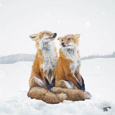 Animal Kingdom – Entre photographie animalière et créations surréalistes (image)