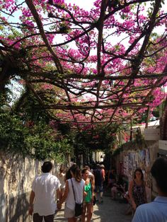 Positano,Italy...canopied by bougainvillea on this beautiful path.