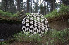 Flower of Life by Powerofwood on Etsy