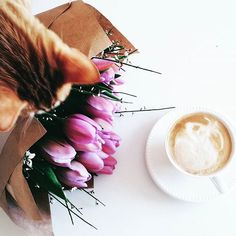 Good morning! 💜☕ #morning #happy #happymoment #ebook #library #author #audiobook #paperbooks #ebooks #kindle #ipad #nook #booklovers #authorsofinstagram #writersofinstagram #thegirlonthetrain #novel #bookandcandle #coffee #bookaddict #bookworm #flowers #tulips