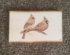 Another cardinal wood burning! I seem to sell a Lot of these babies!