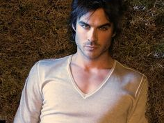 The Vampire Diaries ღ - the-vampire-diaries Wallpaper