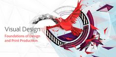 Visual Design is a year-long, project-based curriculum that develops key digital communication skills such as design, project management, research and communication, and photography, graphic design and illustration, and page layout technical skills using Adobe tools.