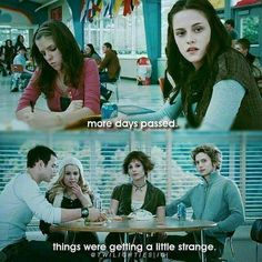 Twilight Scenes, Twilight 2008, Twilight Quotes, Twilight Saga Series, Twilight Book, Twilight Cast, Twilight New Moon, Twilight Pictures, Billy Burke